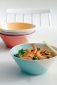 1815 Noodle Bowls set of 4 Brights 21cm